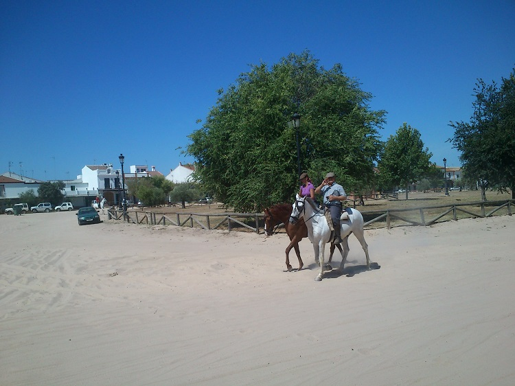 Horses in the streets of El Rocio