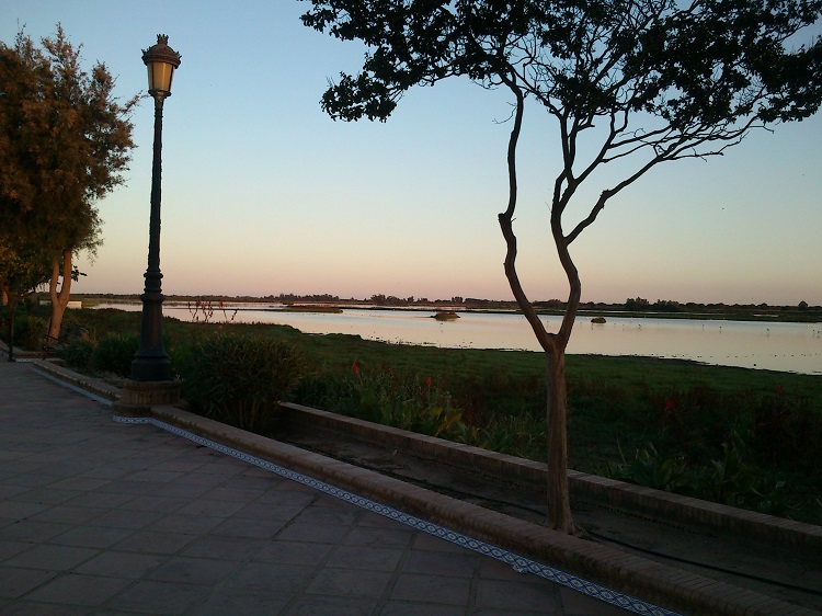 Wetlands of Doñana seen from the promenade in El Rocio