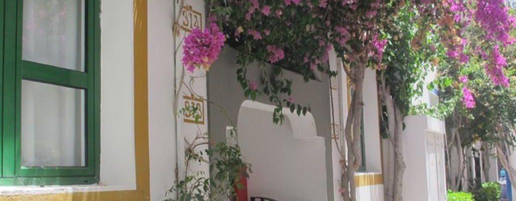 Canaries Puerto de Mogan Ground Floor Apart 36926